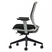Tonique Chair With White Frame