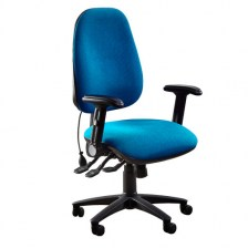 Platinum Ergonomic Task Chair