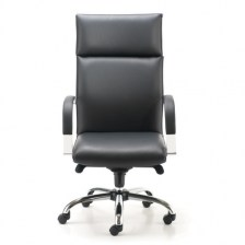 Harlequin Executive Arm Chair